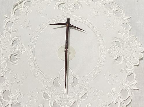 Cruz del árbol de Querétaro