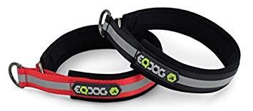 EQ Dog Collar