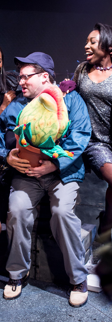 Little Shop of Horrors at Playhouse on Park
