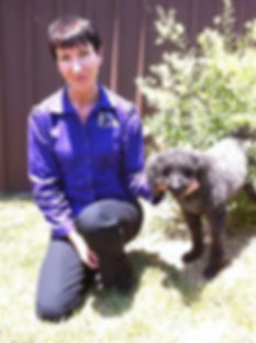Expert and effective dog behaviour training, Sydney