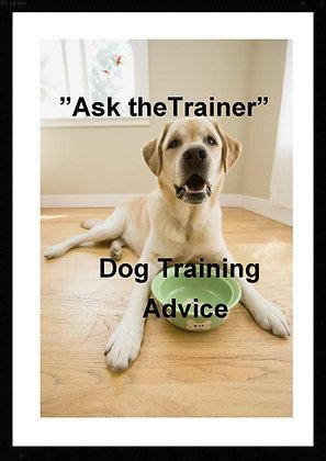 Dog Training Advice - 1 Question