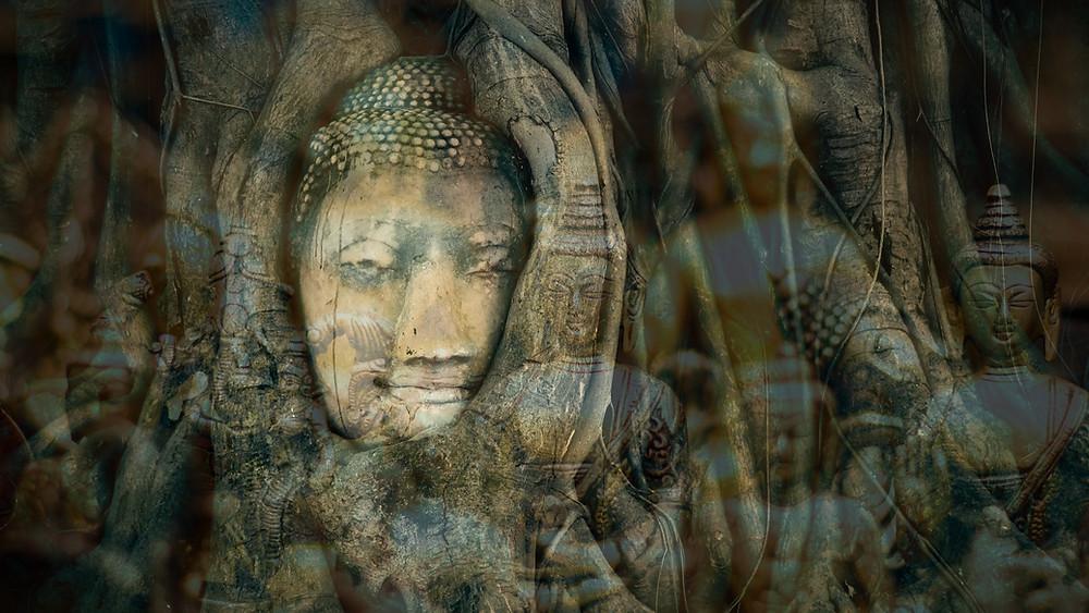 Bouddha Purmina