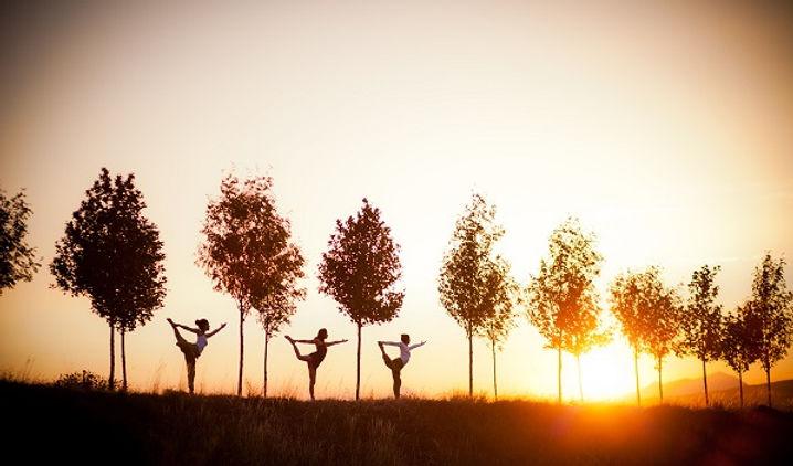 yoga chambery yogaghara