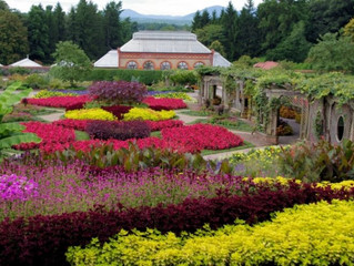 Asheville's Biltmore Estate shines in every season