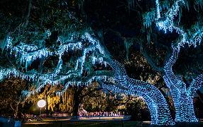 Jekyll Island Christmas_1.jpg