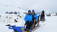 Dog sledding on a glacier in an unforgettable excursion in Alaska