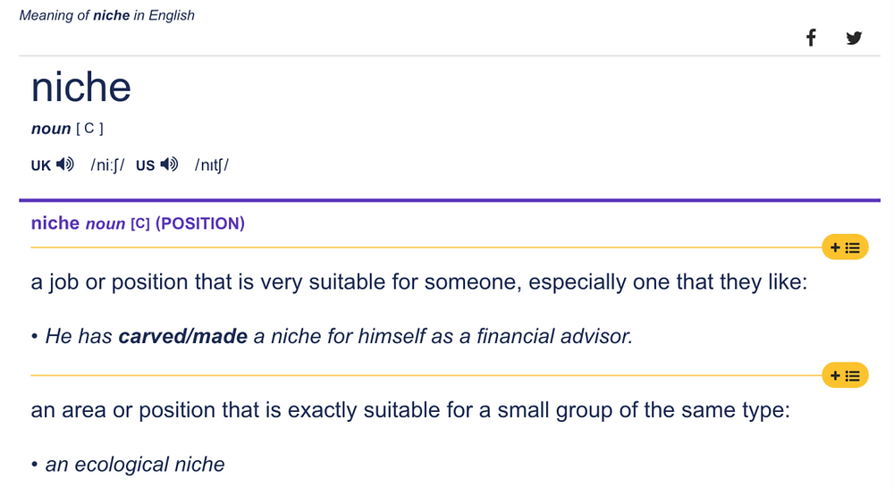 What is a niche - Cambridge Dictionary