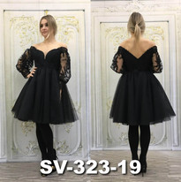 SV-323-19.jpg
