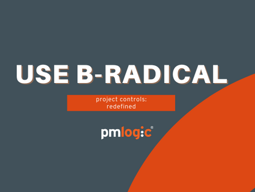 RAID is outdated: use B-RADICAL for Better Project Management