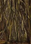 groen zwart bos k.jpg