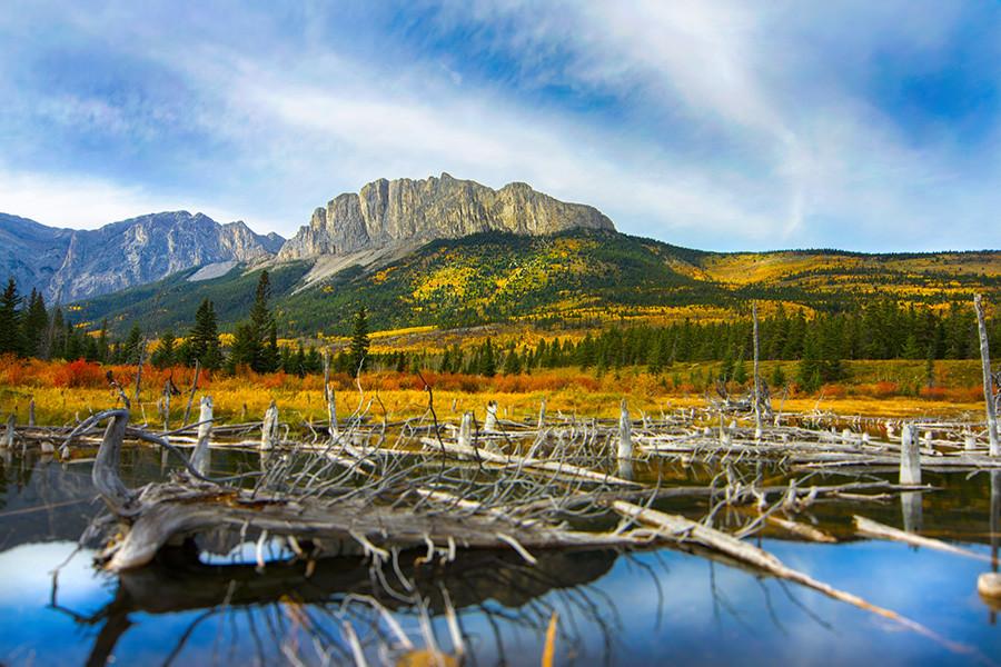 Mt. Yamnuska and ponds