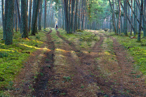 Milels of Trails