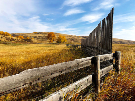 Glenbow Ranch Park fence