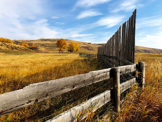 Glenbow-Ranch-Park_fence_0619_web.jpg