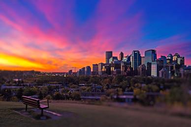 Calgary sunrise bench