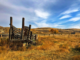 Glenbow Ranch old cattle chute