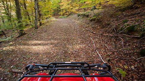 quad trail