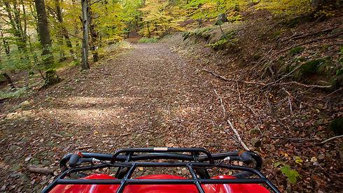 quad_trail-fall_1200px.jpg