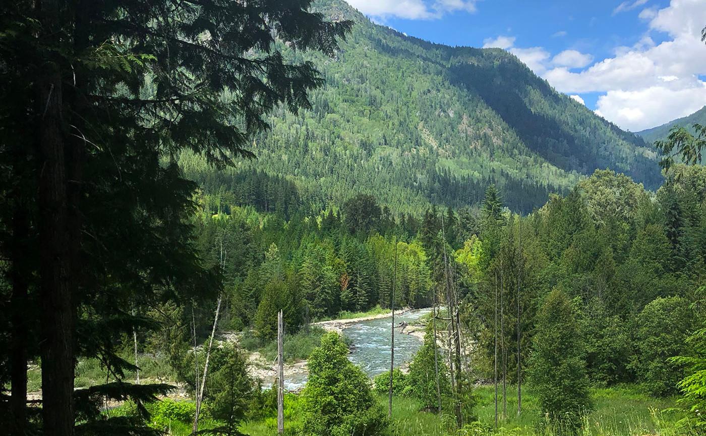 Rv campsite view