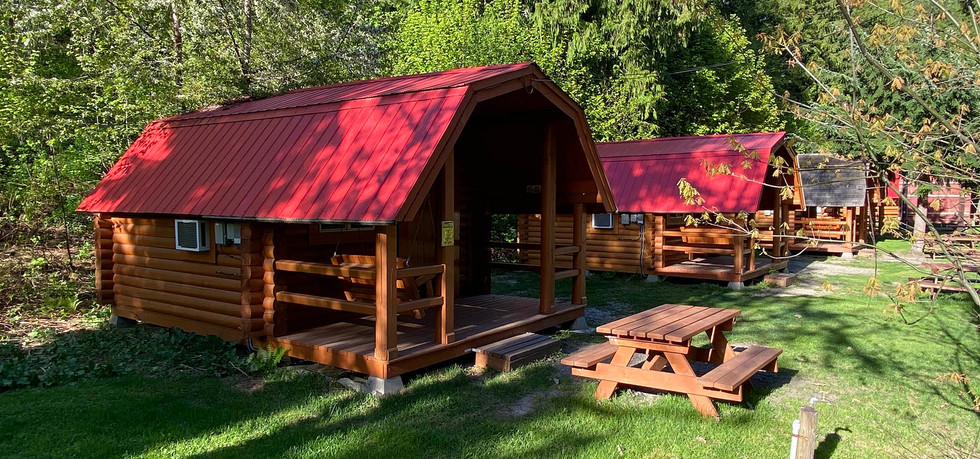 cabins to rent by Revelstoke