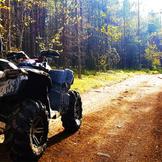 Quad Trails