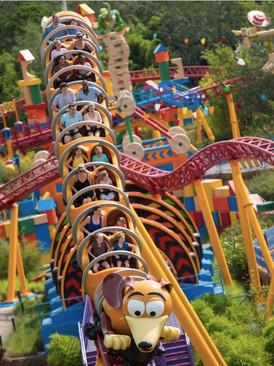 roller-coaster-Disney-World_vertical.jpg