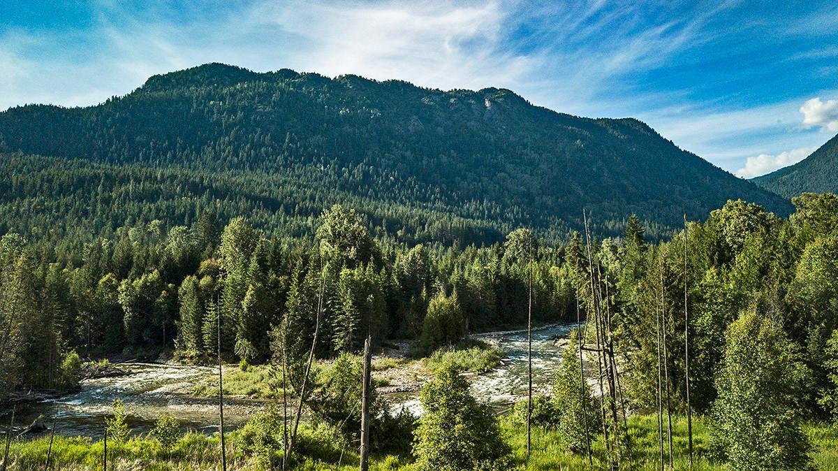 Crawford Creek view