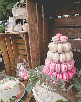 candy-bar-v-prirode-princess-cakes-trenc