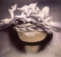 02.Oil on Paper copy.jpg