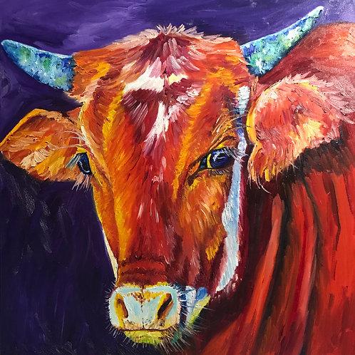 """sweet eyes"" Cow oil painting"