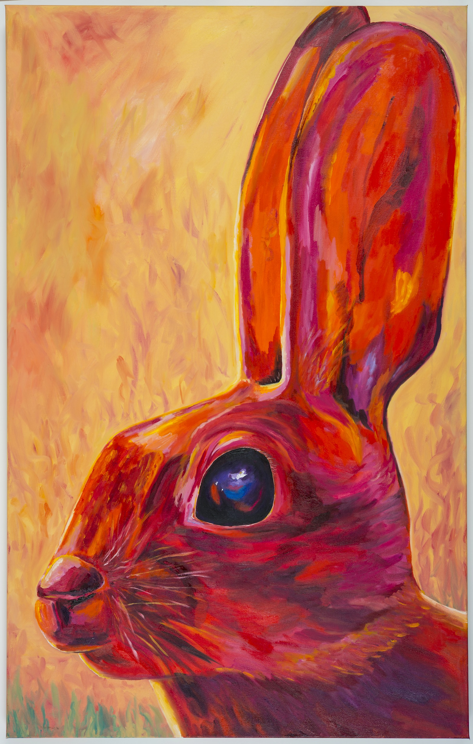 Rabbit copy 4.jpg