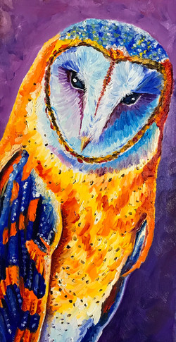 barn owl, sold.jpg