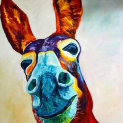 Donkey, sold.jpg