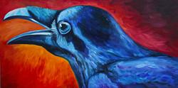 Raven, sold.JPG