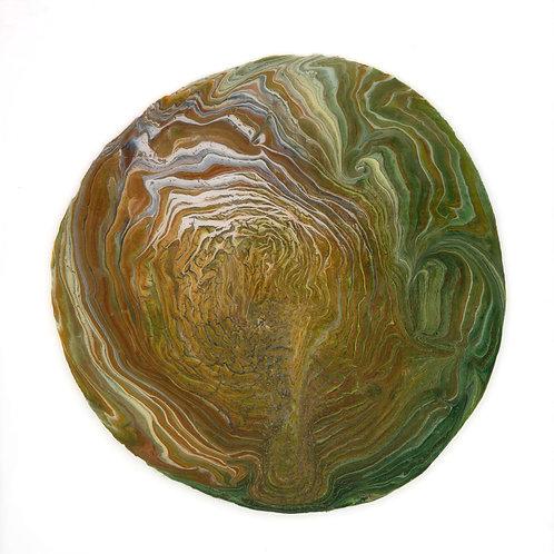 Lignum Annulos | Tree Ring 6
