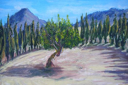 Cypress Crescent