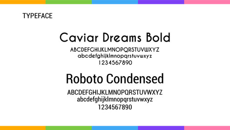 Chroma Brand Guidelines - Fonts