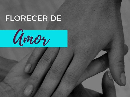 MINI CURSO FLORECER DE AMOR