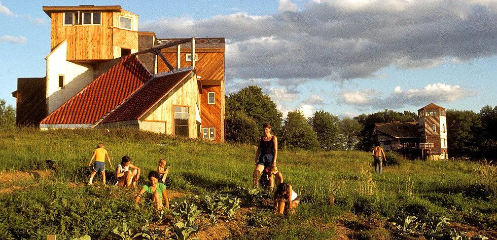 Garden82-crop.jpg