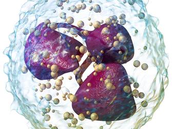 Lökosit Sayısı Düşük Veya Lökosit İşlevi Bozuk Hastalarda Enfeksiyon Tedavisi İçin Lökosit Transfüzy