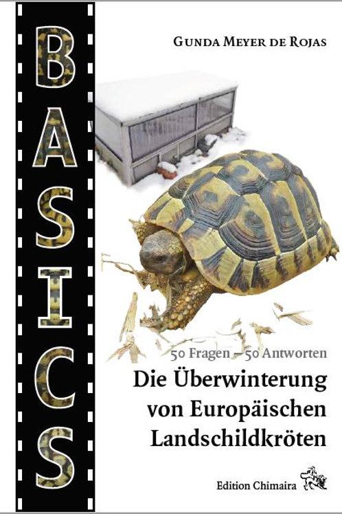 Überwinterung Europäischer Landschildkröten
