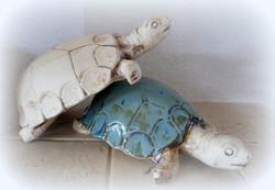 Schildkröte ca 27x18cm € 28,00