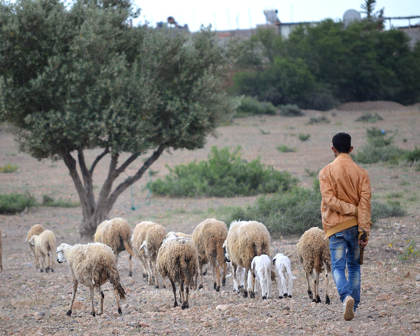 Marokko (9).JPG