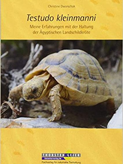 Testudo Kleinmanni, meine Erfahrungen mit der Haltung Ägyptische Landschildkröte