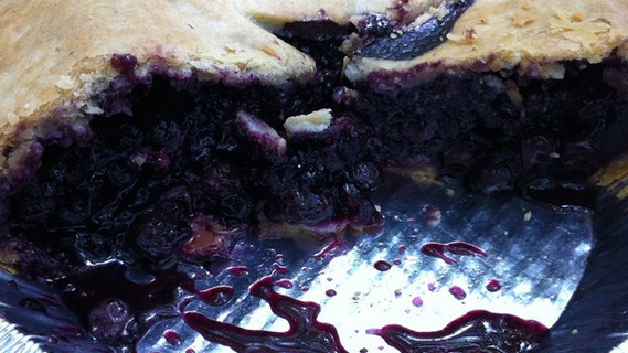 Blueberry Bliss at Briemere Farms