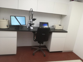 Het nieuwe laboratorium van Dierenarts Den Bommel.
