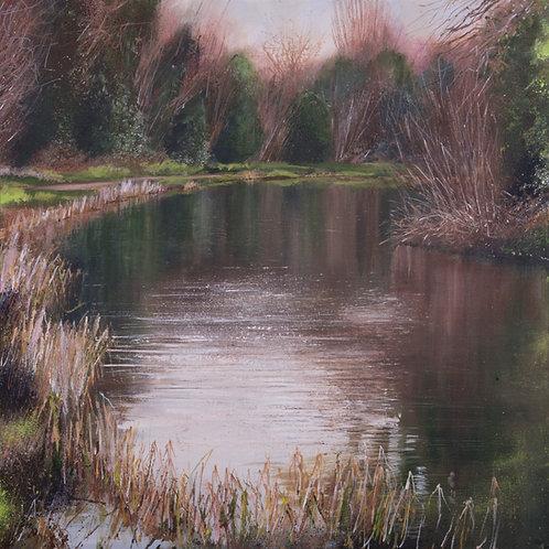 Reeds at my Feet, Blackwater