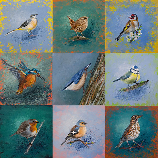 9 - pack of assorted bird greetings cards