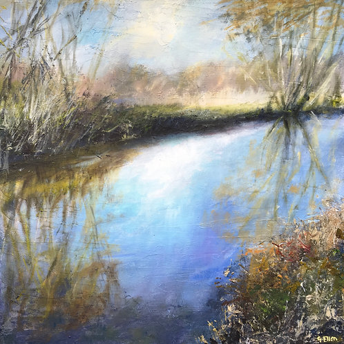 River Wey, Godalming