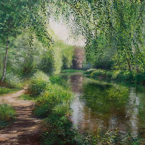 Dappled Path, Basingstoke Canal